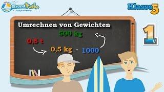 Gewicht umrechnen - kg g mg Tonne || Klasse 5 ★ Übung 1