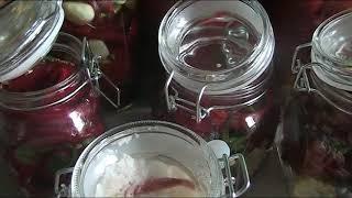 Квашенные лимоны, маринованный острый перец!( бомбическая закуска)// Секреты хороших урожаев.