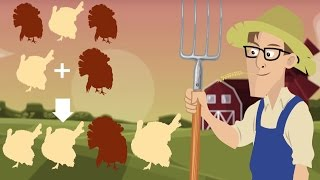 Awesome Video Explains the Science of Thanksgiving Food | What's Trending Now