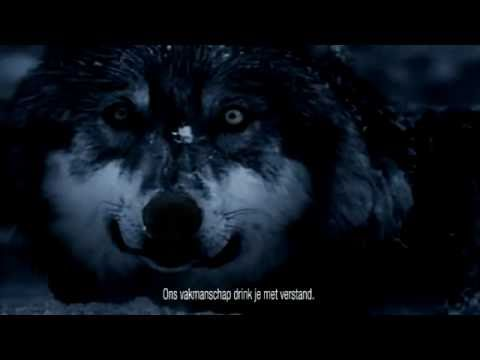 Three Wolf Moon Know Your Meme