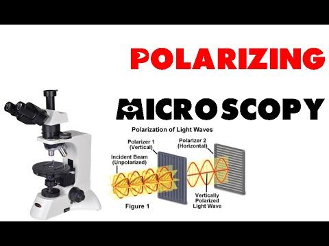 Polarizing microscopy