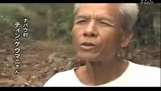 【映画   2015 】ベトナム解放=勝利に導いた2万キロの戦略路
