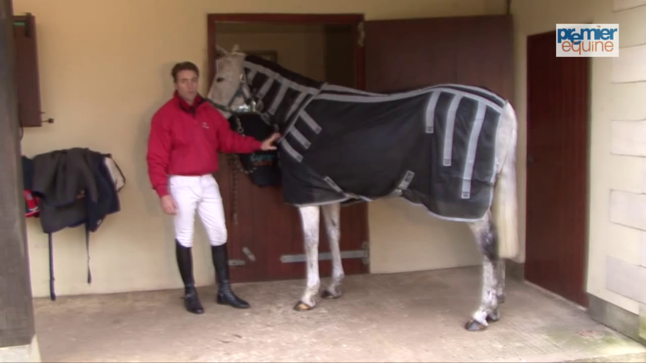 Magni Teque Magnetic Horse Rug With