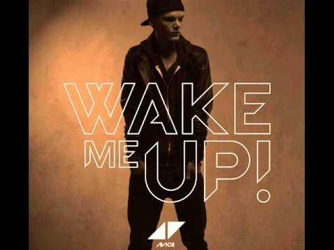 Avicii Ft. Aloe Blacc - Wake Me Up (Official Radio Edit) (Lyrics)