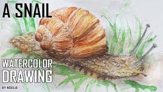 drawing a snail / Как нарисовать улитку