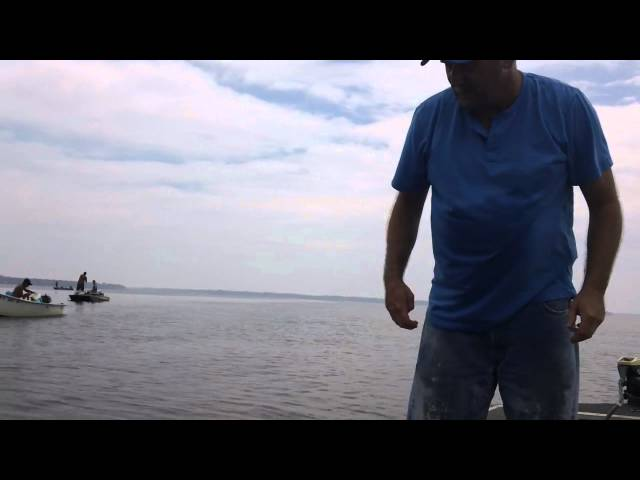 Shrimping on St. Johns River Travel Video
