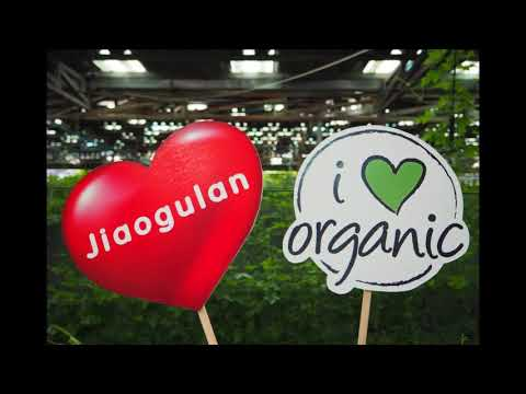 Jiaogulan Leading Grower and Producer in Asia