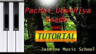 Song Tutorial Pachai Uduthiya Kaadu