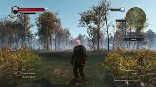 The Witcher 3 Wild Hunt PS4 - Patch 1.12 Swamp gameplay / Frame rate (fps) test