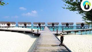 So schön sind die Malediven wirklich | Guru on Tour