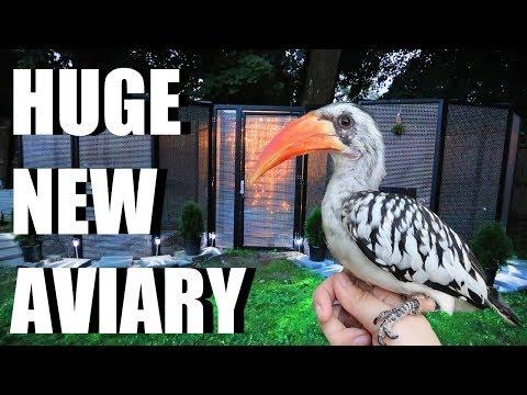 NEW AVIARY! Let's Build Grinchy's Bird Aviary!