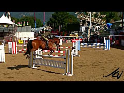 Equestrian Horse Jumping Tournament [HD] - IPE