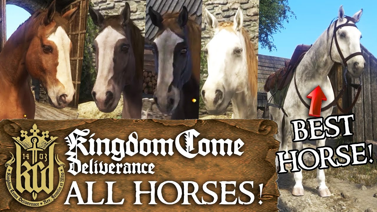 Kingdom Come Deliverance Horse Guide - How to Get a Horse