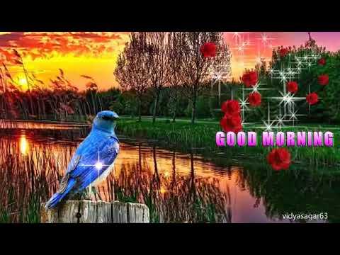 GOOD MORNING.....Ramarao...ever yours.