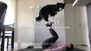 GEICO Insurance - Thank You