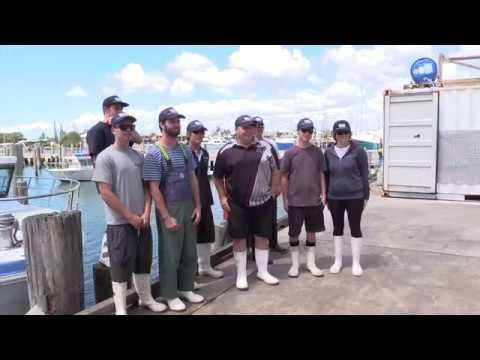 Walker Seafoods | Invest Sunshine Coast