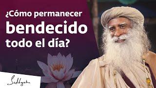 Sadhana: el camino hacia una vida bendecida | Sadhguru