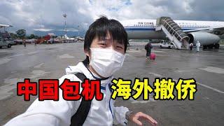 终于回国!中国派包机海外撤侨,尼泊尔回国全过程【大头小头去旅行】