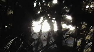 Download Refuge | Christian ambient, instrumental music MP3