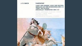 """Lasst uns sorgen, lasst uns wachen, BWV 213: No. 13, """"Lust der Völker, Lust der Deinen"""""""