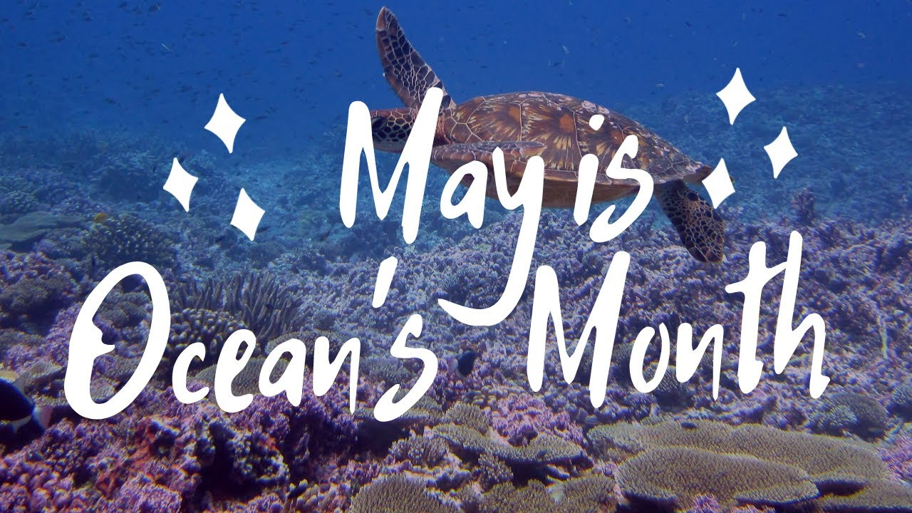 May is Ocean's Month || Philippines || Ka Boom Channel