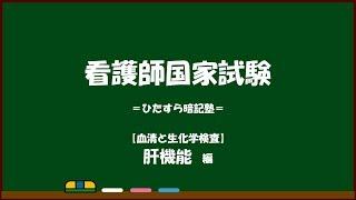 【看護師国家試験対策】血清と生化学検査=肝機能編=