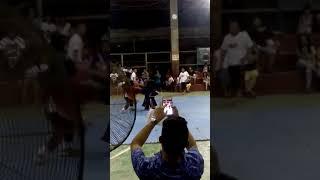 Martial Arts with Kiddos