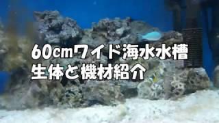 生体と使用機材紹介 thumbnail
