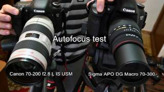 Canon 7D with Canon EF 70-200mm f2.8 L IS USM vs. SIGMA AF 70-300mm f4-5.6 APO MACRO DG