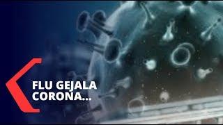 Ilustrasi Virus Corona (Sumber: Shutterstock)JAKARTA, KOMPAS.TV - Kasus positif terinfeksi virus Cor.