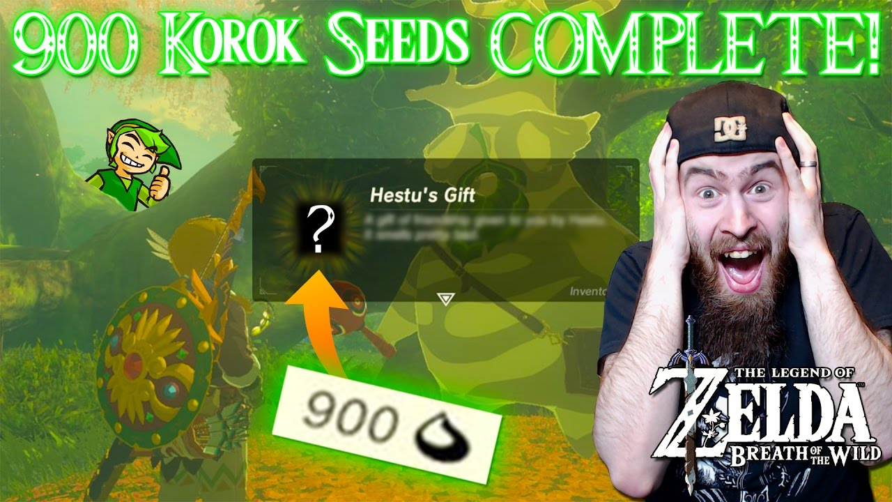 900 Korok Seeds COMPLETE in Breath of the Wild! (Hestu's Smelly ...
