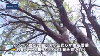 杉並区 「坂の上のけやき公園」で開園式 thumbnail