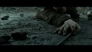 Harry Potter Phoenix song (Falloutboy)