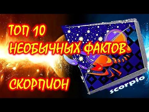 ТОП 10 необычных фактов о Знаке Зодиака Скорпион