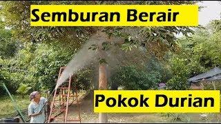 Video Teknik Semburan baja berair di pokok durian. download MP3, 3GP, MP4, WEBM, AVI, FLV Juli 2018