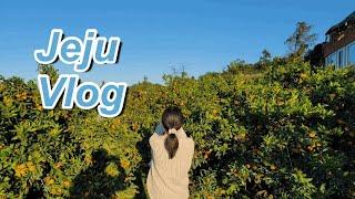 Vlog | 제주 11월 서쪽 여행 | 제주 2박3일 …
