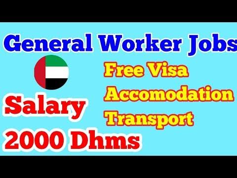 General labour Worker Required in Milk Factory || Urgent Jobs Apply