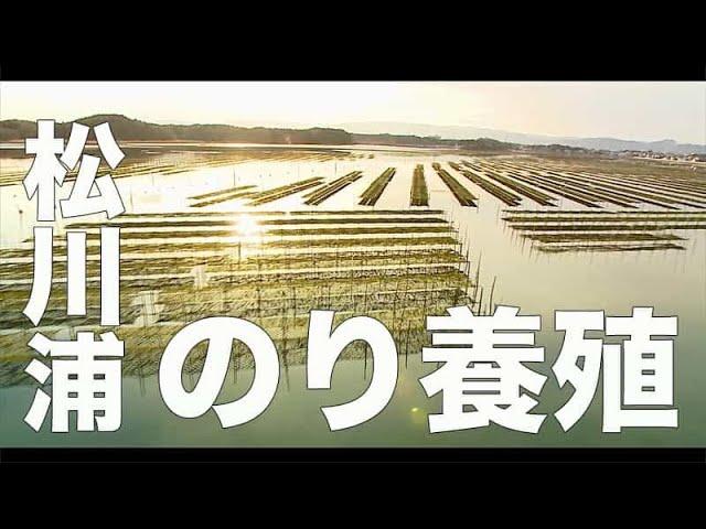 もうすぐ10年、福島。【松川浦・福島#164】「のり養殖」空撮・たごてるよし_Aerial_TAGO channel