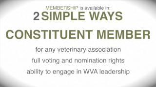 World Veterinary Association - Message from WVA President, Dr René Carlson