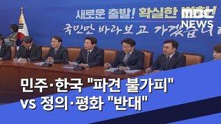 """민주·한국 """"파견 불가피"""" vs 정의·평화 """"반대"""" (…"""