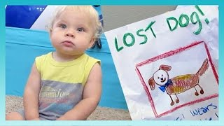 LOST DOG! | Look Who