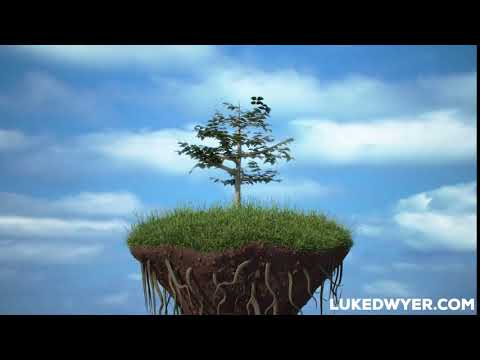 Growing Tree HD 3D CGI Growth Sky Animation growfx corona renderer visual effects vfx artist