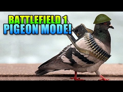 BF1 War Pigeon Gameplay & Details!  Battlefield 1 Pigeon Mode