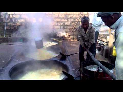 Show Amazing Video In Sasan Gir