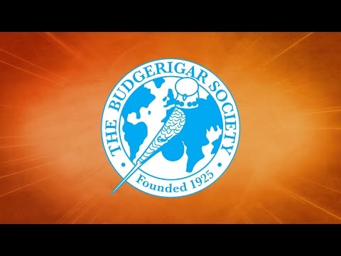 The Budgerigar Society World Championship Show 2014