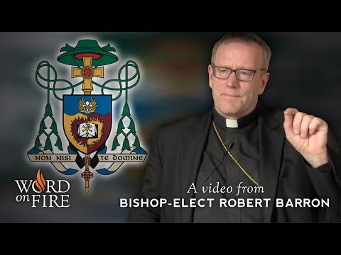 Bishop Barron on His Episcopal Coat of Arms