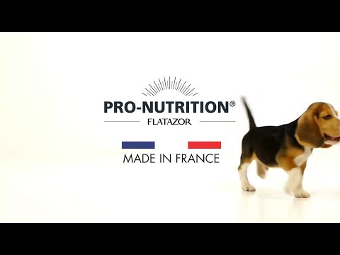 pro-nutrition-|-croquettes-pour-chiens-et-chats-|-made-in-france