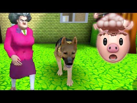 MISS T GOT A DOG??   Scary Teacher 3D Gameplay Walkthrough