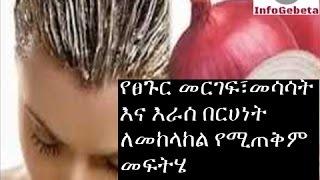 InfoGebeta: Hair Health Tips