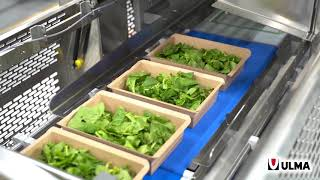 High-performance traysealers for fruit and vegetable applications